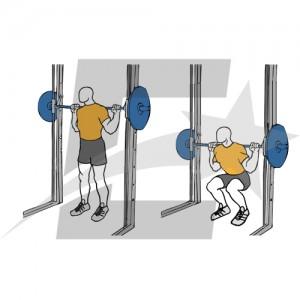 aparatos de gimnasia para hacer sentadillas